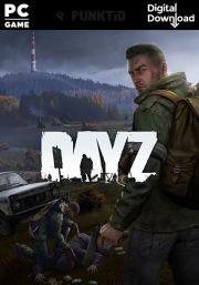 DayZ (PC)
