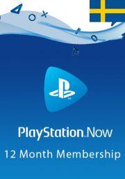 Sweden PlayStation Now 12 Mėnesių Prenumerata